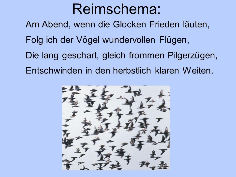 Reimschema: Am Abend, wenn die Glocken Frieden läuten, Folg ich der Vögel wundervollen Flügen, Die lang geschart, gleich frommen Pilgerzügen, Entschwinden in den herbstlich klaren Weiten.