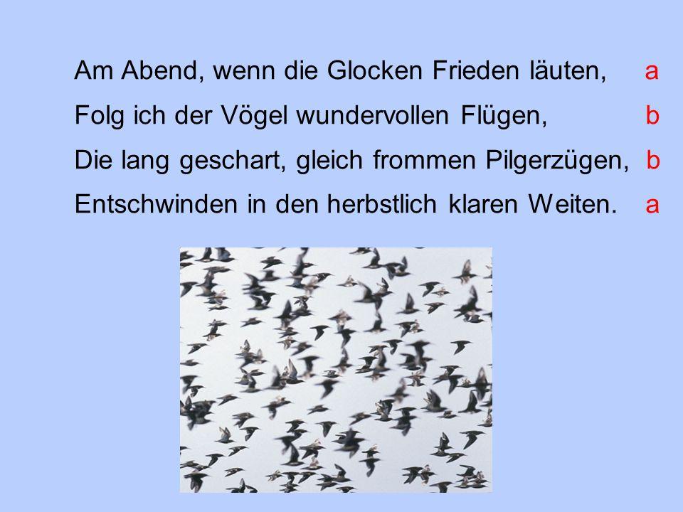 Am Abend, wenn die Glocken Frieden läuten, a Folg ich der Vögel wundervollen Flügen, b Die lang geschart, gleich frommen Pilgerzügen, b Entschwinden in den herbstlich klaren Weiten.