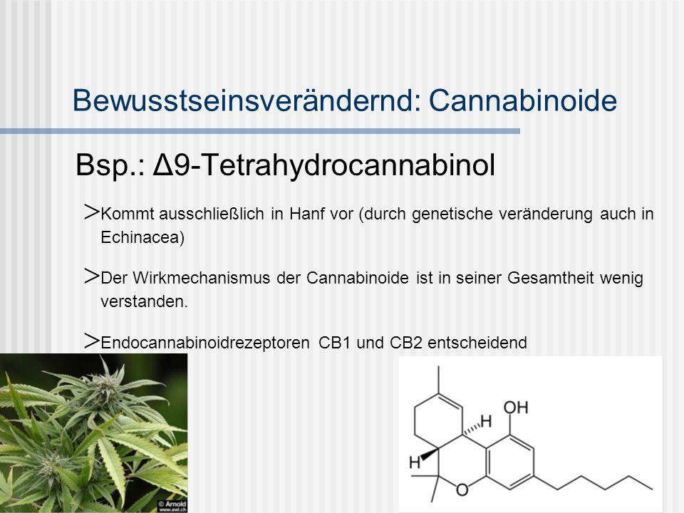Bewusstseinsverändernd: Mescalin halluzinogenes Alkaloid mit Phenethylamin-Struktur.