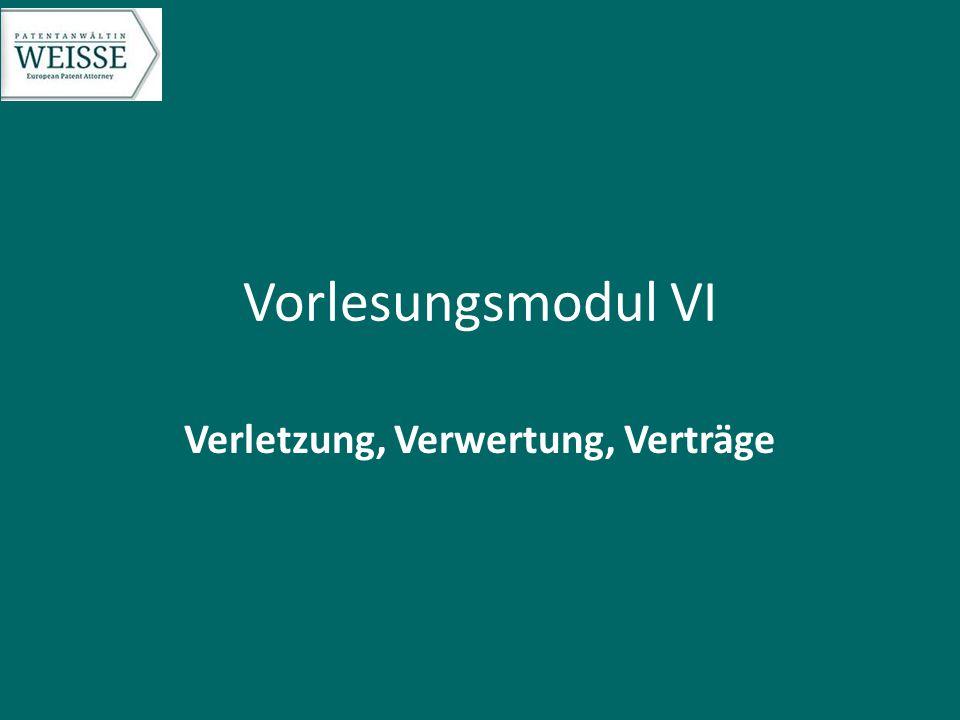 Vorlesungsmodul VI Verletzung, Verwertung, Verträge