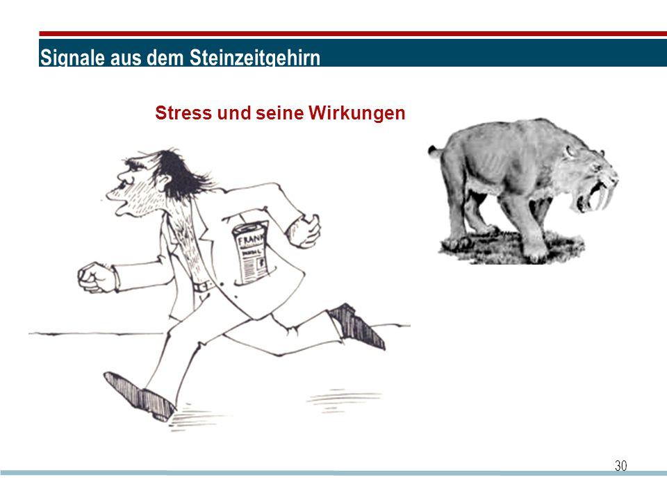 Signale aus dem Steinzeitgehirn 30 Stress und seine Wirkungen
