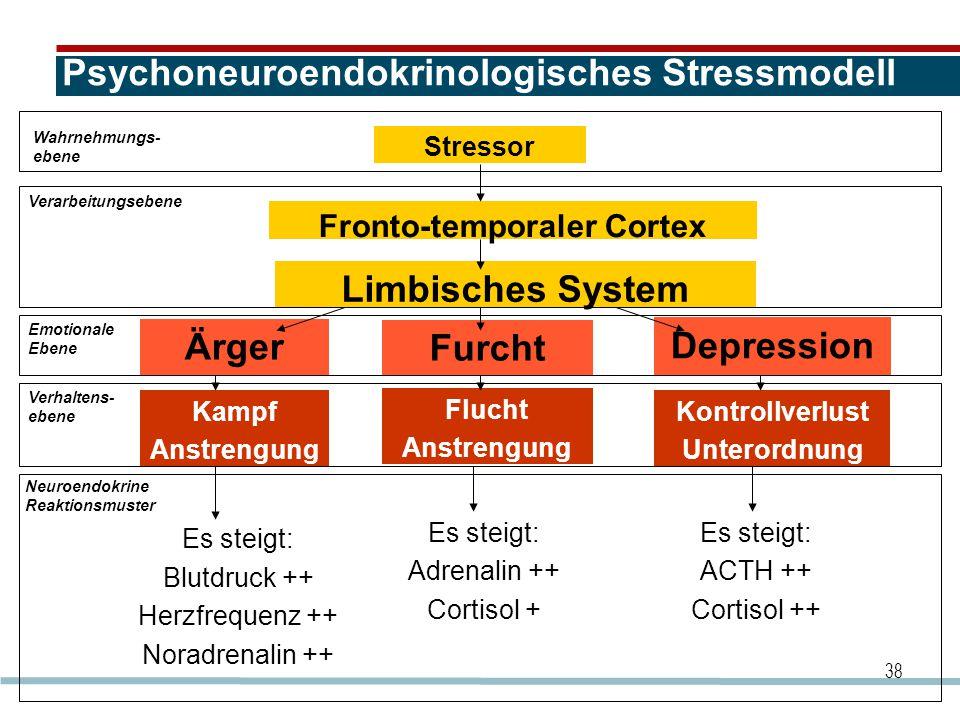 38 Psychoneuroendokrinologisches Stressmodell Stressor Fronto-temporaler Cortex Limbisches System Depression Furcht Ärger Kontrollverlust Unterordnung