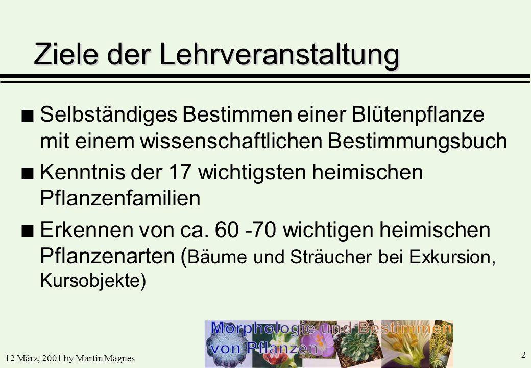 12 März, 2001 by Martin Magnes 2 n Selbständiges Bestimmen einer Blütenpflanze mit einem wissenschaftlichen Bestimmungsbuch n Kenntnis der 17 wichtigs