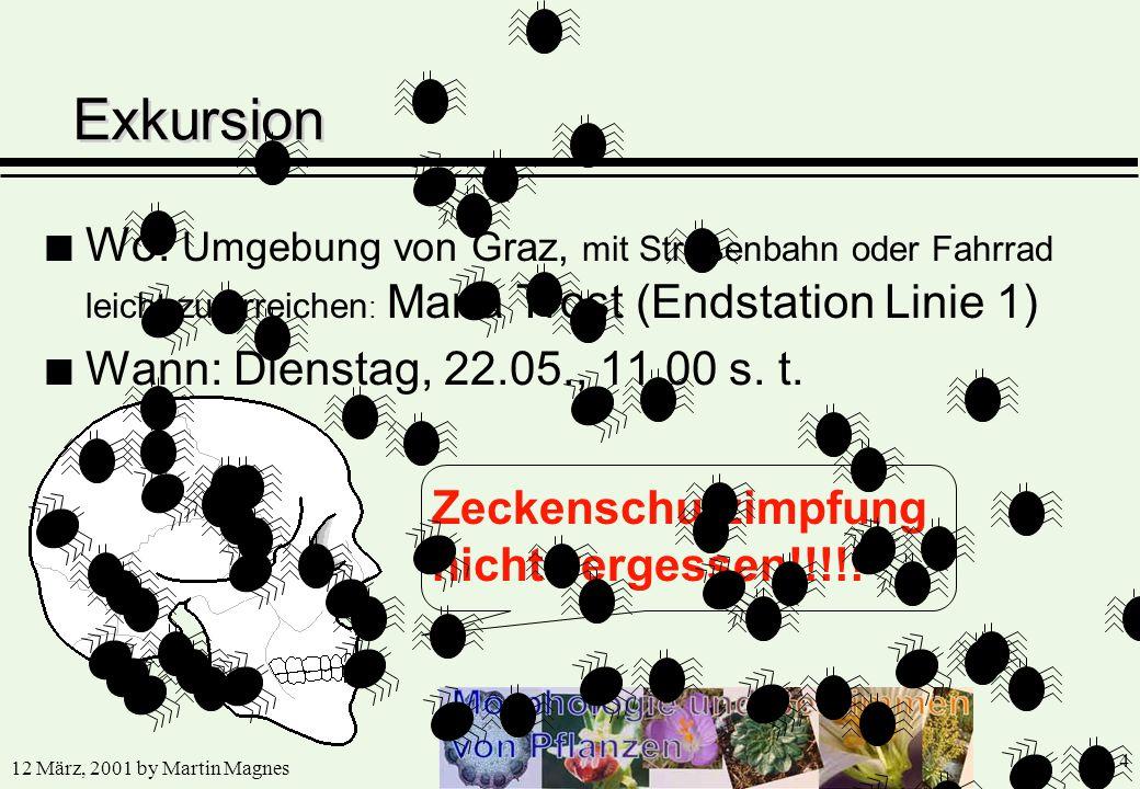 12 März, 2001 by Martin Magnes 4 n Wo: Umgebung von Graz, mit Straßenbahn oder Fahrrad leicht zu erreichen : Maria Trost (Endstation Linie 1) n Wann: