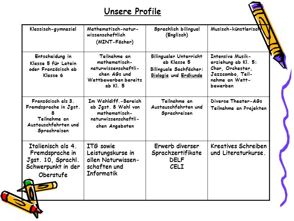 Unsere Profile Klassisch-gymnasialMathematisch-natur- wissenschaftlich (MINT-Fächer) Sprachlich bilingual (Englisch) Musisch-künstlerischl Entscheidun