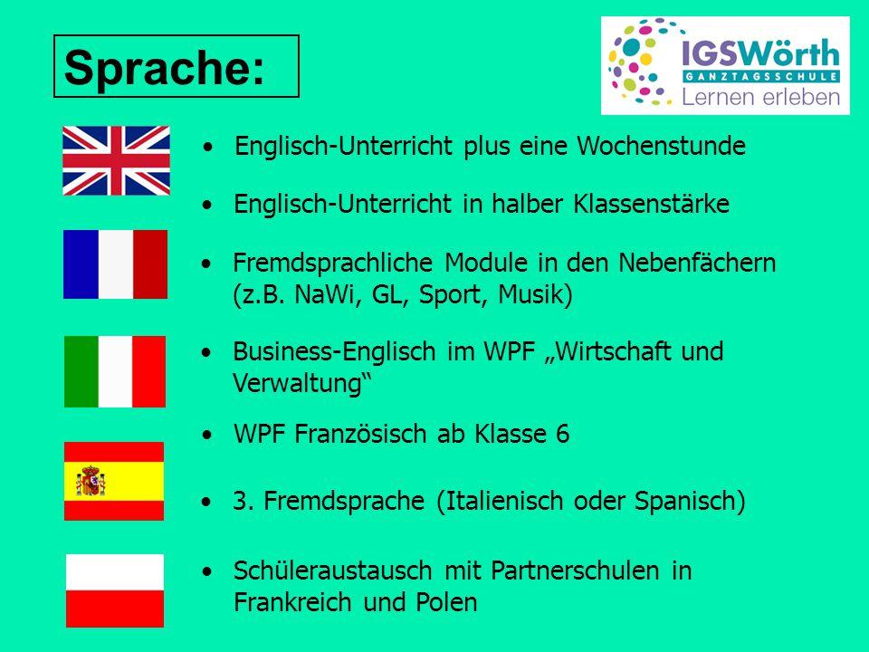 Sprache: Englisch-Unterricht in halber Klassenstärke WPF Französisch ab Klasse 6 Fremdsprachliche Module in den Nebenfächern (z.B. NaWi, GL, Sport, Mu