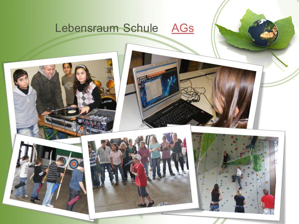 Lebensraum Schule AGsAGs