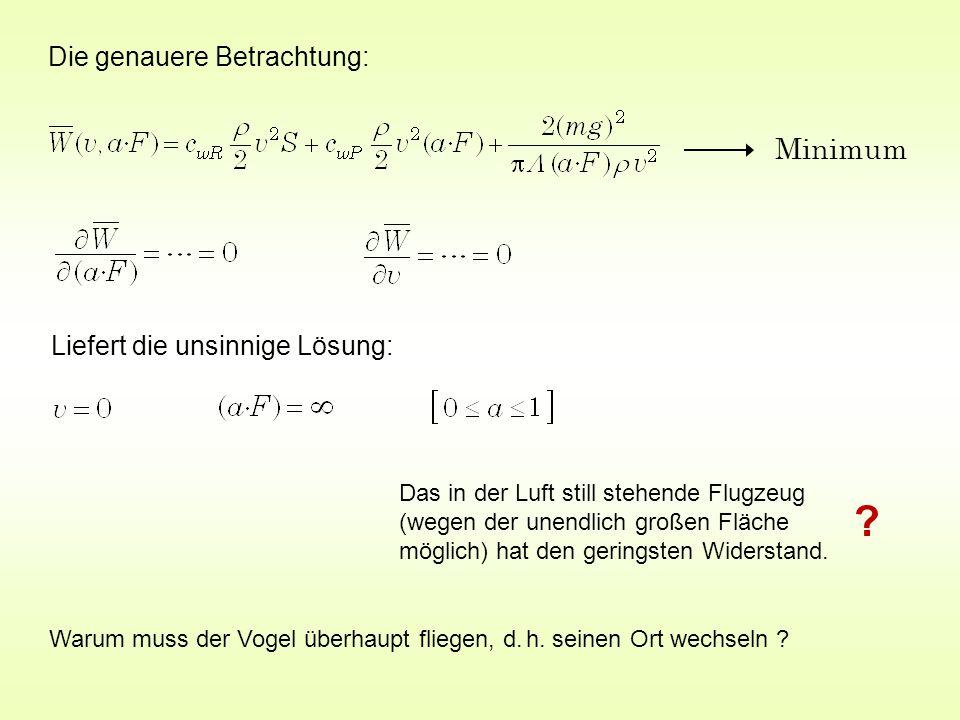 Minimum Liefert die unsinnige Lösung: Das in der Luft still stehende Flugzeug (wegen der unendlich großen Fläche möglich) hat den geringsten Widerstand.