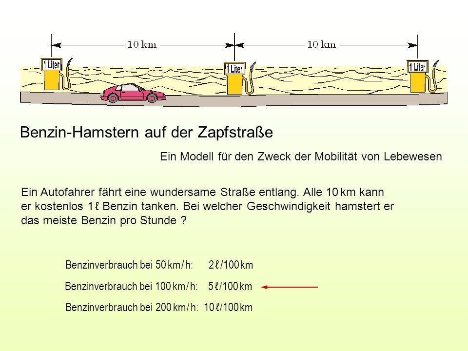 Benzin-Hamstern auf der Zapfstraße Ein Modell für den Zweck der Mobilität von Lebewesen Benzinverbrauch bei 50 km / h: 2 ℓ /100 km Benzinverbrauch bei 100 km / h: 5 ℓ /100 km Benzinverbrauch bei 200 km / h: 10 ℓ /100 km Ein Autofahrer fährt eine wundersame Straße entlang.