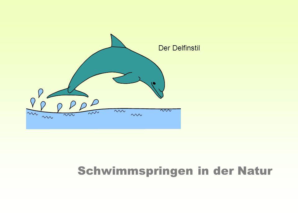 Schwimmspringen in der Natur Der Delfinstil