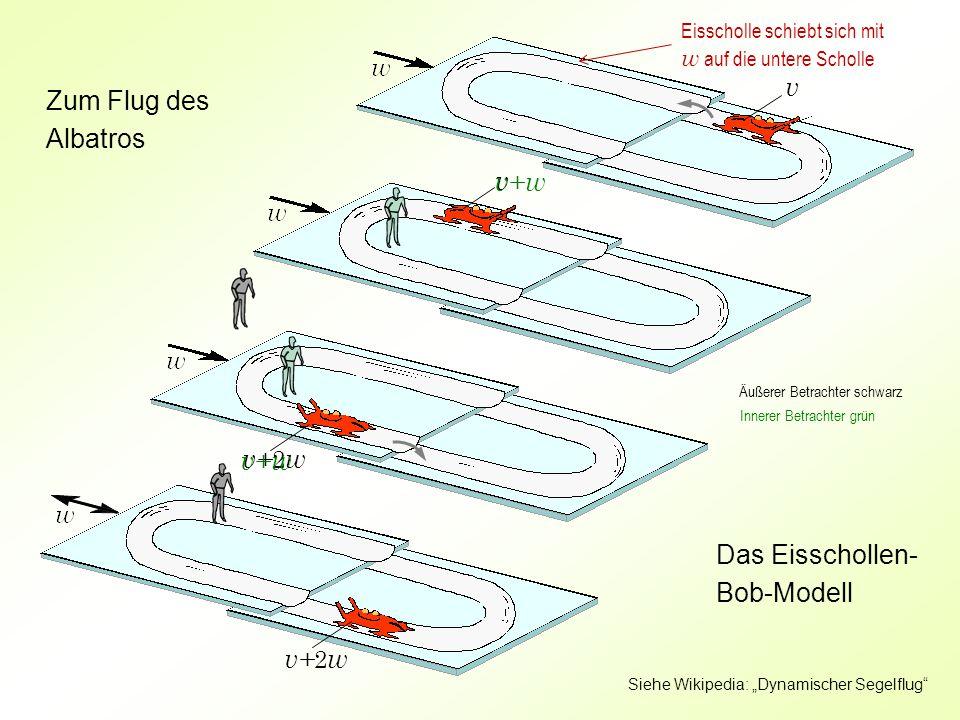 """v v v+ 2 w v+ w Zum Flug des Albatros Das Eisschollen- Bob-Modell v+ w Äußerer Betrachter schwarz Innerer Betrachter grün Eisscholle schiebt sich mit w auf die untere Scholle Siehe Wikipedia: """"Dynamischer Segelflug"""
