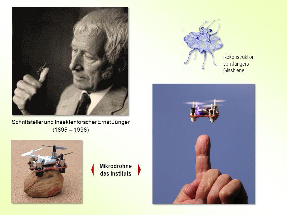 Mikrodrohne des Instituts Schriftsteller und Insektenforscher Ernst Jünger (1895 – 1998) Rekonstruktion von Jüngers Glasbiene