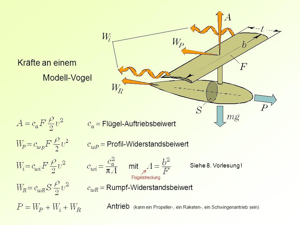 = Flügel-Auftriebsbeiwert = Profil-Widerstandsbeiwert Kräfte an einem Modell-Vogel = Rumpf-Widerstandsbeiwert mit Siehe 8. Vorlesung ! Antrieb (kann e