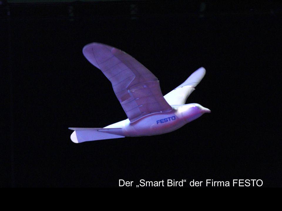 """Der """"Smart Bird"""" der Firma FESTO"""