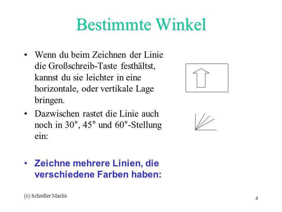 (c) Schedler Marlis 4 Bestimmte Winkel Wenn du beim Zeichnen der Linie die Großschreib-Taste festhältst, kannst du sie leichter in eine horizontale, o