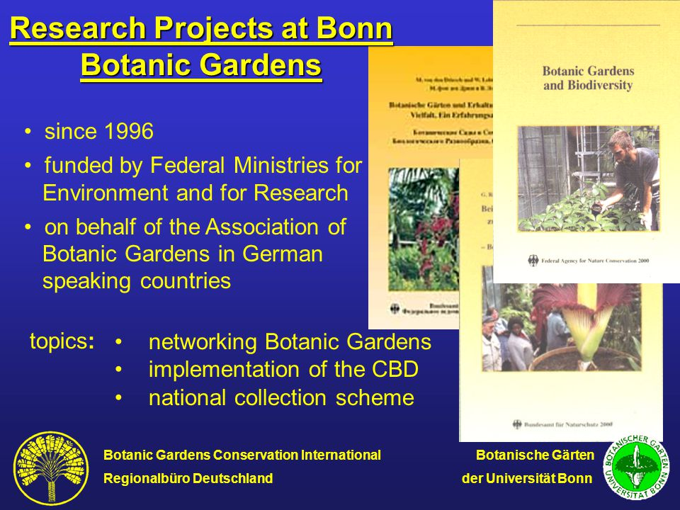 Activities recording special collectionsresearch institutions of Botanic Gardens horticultural institutions nurseries private collectors/amateurs in Germany Austria German speaking Switzerland voluntary records N O evaluation Call to commit collections Send out of questionnairs, visits of collections (partly by other exerts), telephone interviews by Botanic Gardens Conservation International Botanische Gärten Regionalbüro Deutschland der Universität Bonn
