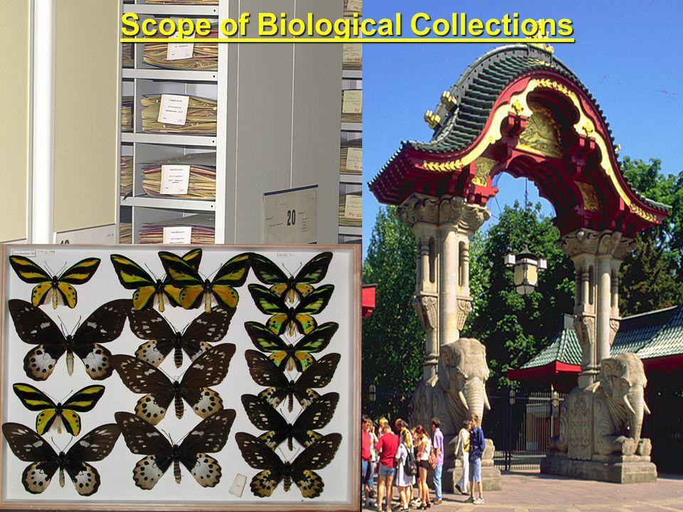 Results holder of collections (n=110) proportion of collections (n=549) 64 %79 % Botanic Gardens Conservation International Botanische Gärten Regionalbüro Deutschland der Universität Bonn
