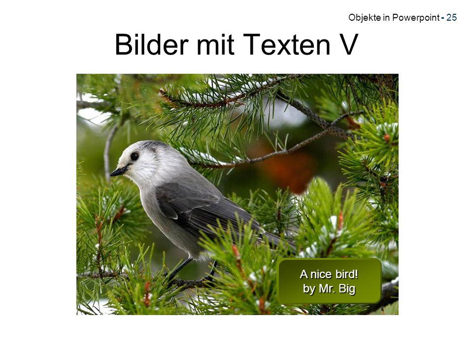 Objekte in Powerpoint - 25 Bilder mit Texten V A nice bird! by Mr. Big A nice bird! by Mr. Big