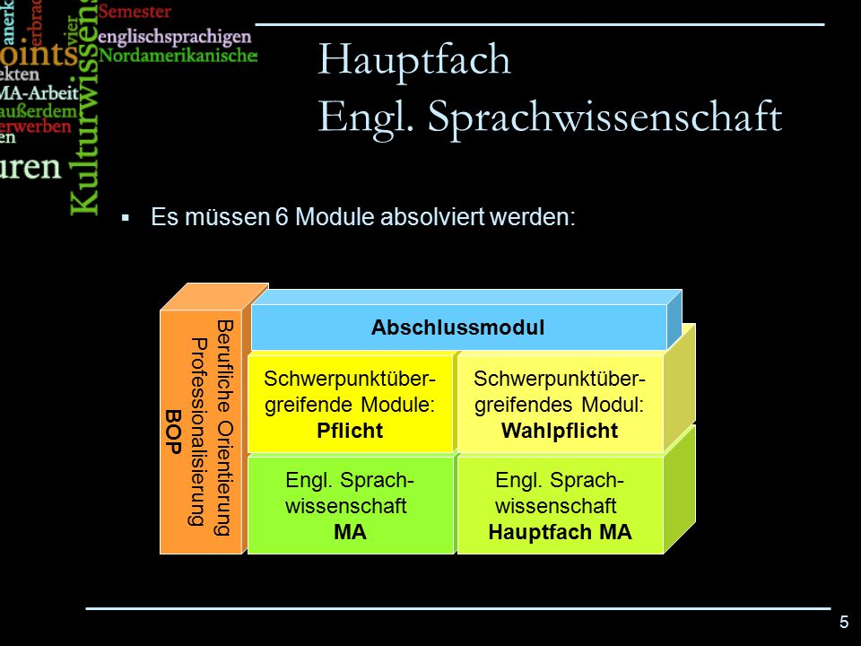 5 Berufliche Orientierung Professionalisierung BOP Hauptfach Engl. Sprachwissenschaft Engl. Sprach- wissenschaft MA Engl. Sprach- wissenschaft Hauptfa