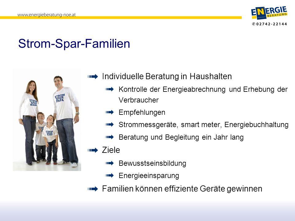 Stromverbrauch in Haushalten © Amt der NÖ Landesregierung/ GFE