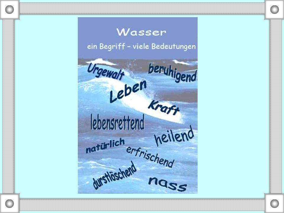 Auf Deutsch heisst das: Du hast ein Kilo Scheisse zu Dir genommen!