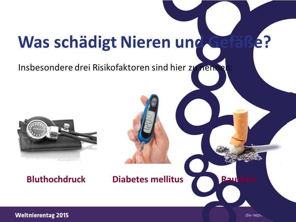 """Häufigste Ursachen für die Dialyse Fast 2/3 aller """"Dialyse-Fälle sind auf Diabetes mellitus oder auf Bluthochdruck zurückzuführen."""