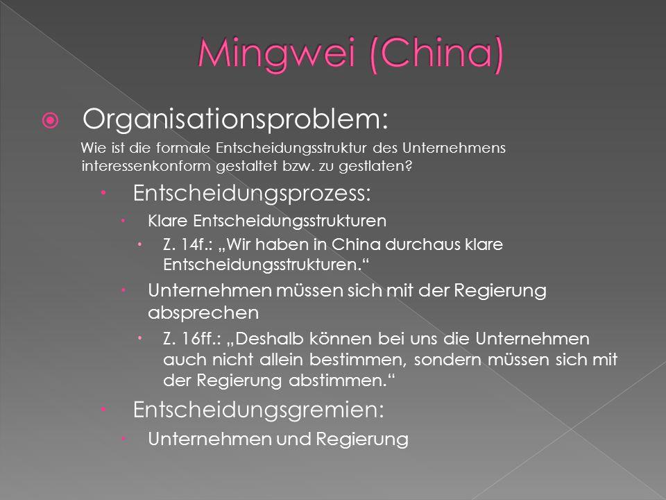  Organisationsproblem: Wie ist die formale Entscheidungsstruktur des Unternehmens interessenkonform gestaltet bzw.