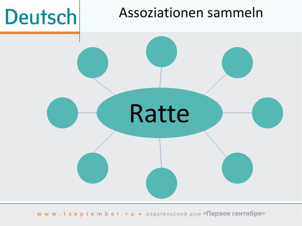 Assoziationen sammeln Ratte