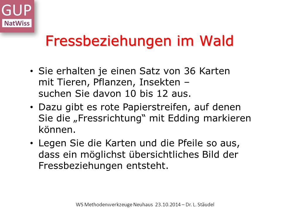 Das Kugellager WS Methodenwerkzeuge Neuhaus 23.10.2014 – Dr. L. Stäudel