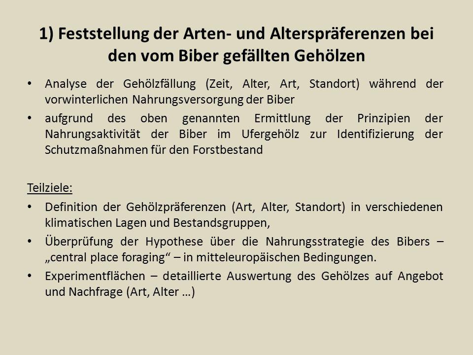 1) Feststellung der Arten- und Alterspräferenzen bei den vom Biber gefällten Gehölzen Analyse der Gehölzfällung (Zeit, Alter, Art, Standort) während d