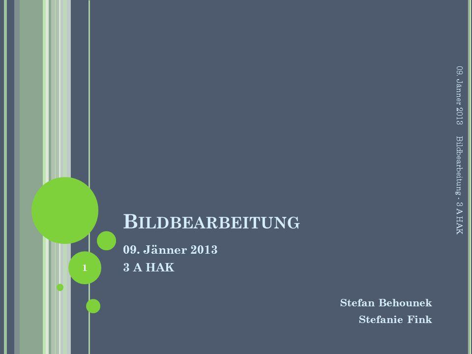 B ILDBEARBEITUNG 09.Jänner 2013 3 A HAK Stefan Behounek Stefanie Fink 09.