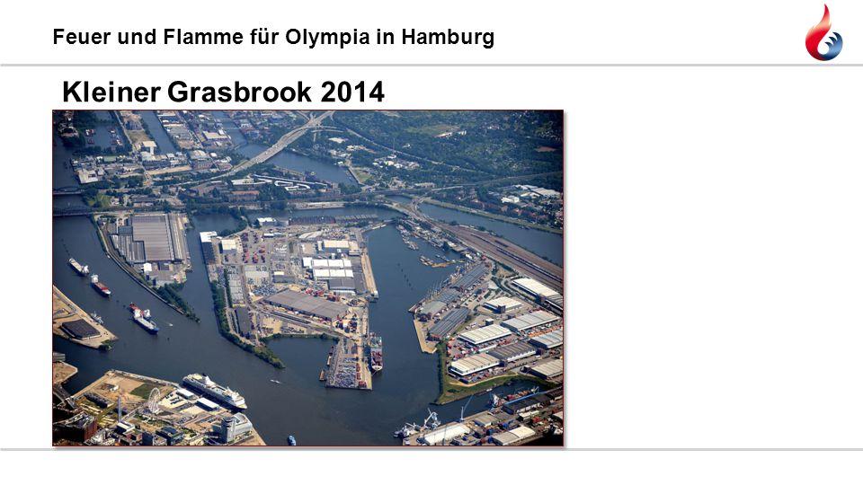 Feuer und Flamme für Olympia in Hamburg Kleiner Grasbrook 2014