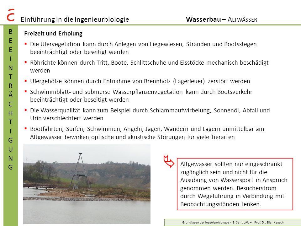 Einführung in die IngenieurbiologieWasserbau – A LTWÄSSER BEEINTRÄCHTIGUNGBEEINTRÄCHTIGUNG Grundlagen der Ingenieurbiologie - 3. Sem. LAU – Prof. Dr.