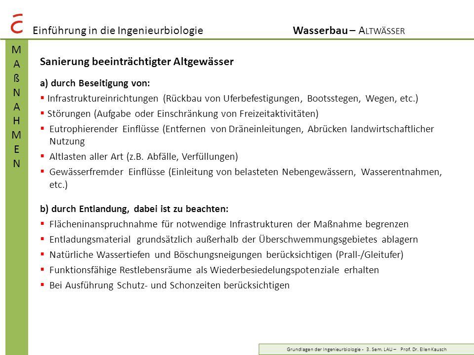 Einführung in die IngenieurbiologieWasserbau – A LTWÄSSER MAßNAHMENMAßNAHMEN Grundlagen der Ingenieurbiologie - 3. Sem. LAU – Prof. Dr. Ellen Kausch S