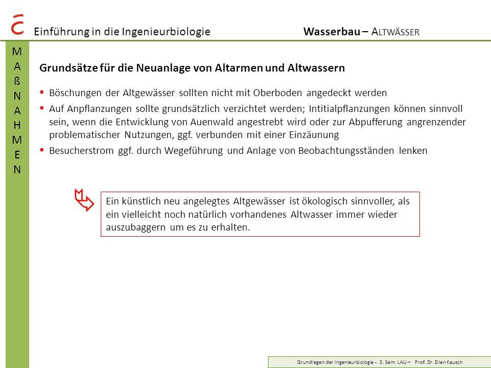Einführung in die IngenieurbiologieWasserbau – A LTWÄSSER MAßNAHMENMAßNAHMEN Grundlagen der Ingenieurbiologie - 3. Sem. LAU – Prof. Dr. Ellen Kausch G