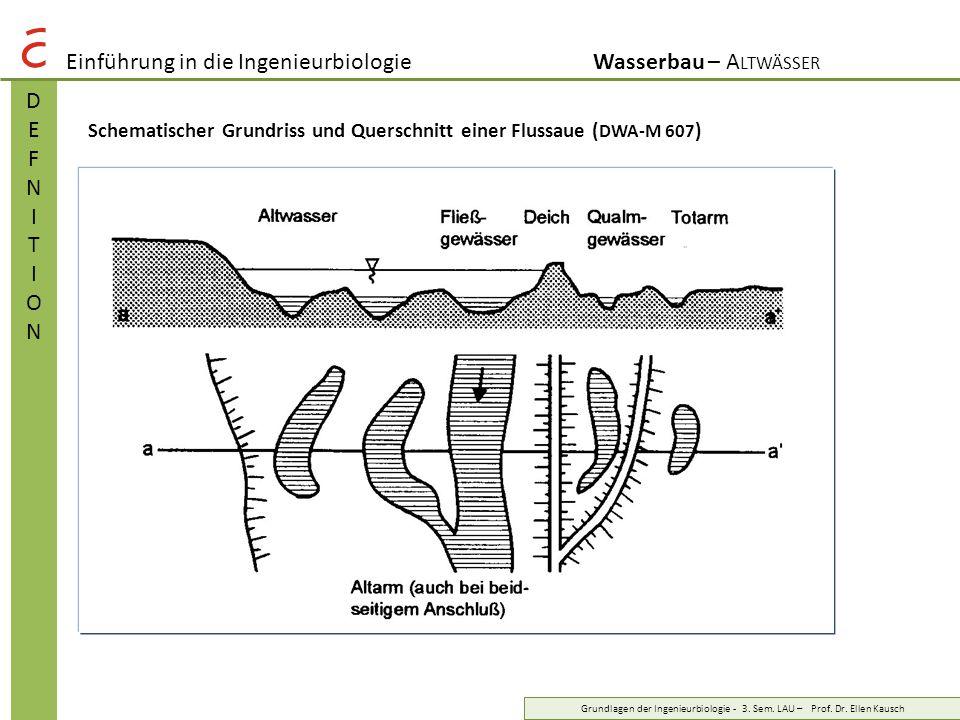 Einführung in die IngenieurbiologieWasserbau – A LTWÄSSER DEFNITIONDEFNITION Grundlagen der Ingenieurbiologie - 3. Sem. LAU – Prof. Dr. Ellen Kausch S
