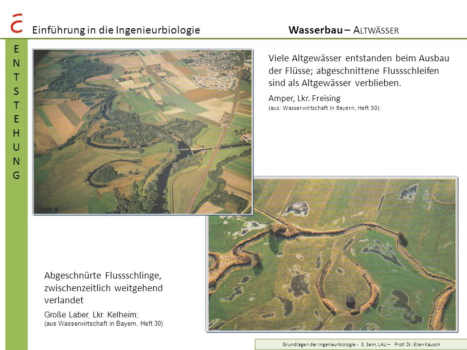Einführung in die IngenieurbiologieWasserbau – A LTWÄSSER MAßNAHMENMAßNAHMEN Grundlagen der Ingenieurbiologie - 3.