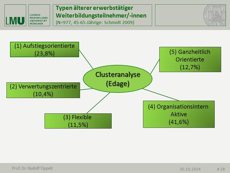 Typen älterer erwerbstätiger Weiterbildungsteilnehmer/-innen (N=977, 45-65-Jährige: Schmidt 2009) Clusteranalyse(Edage) (1)Aufstiegsorientierte (23,8%
