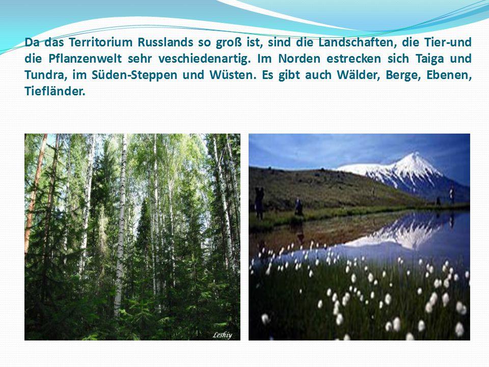 Da das Territorium Russlands so groß ist, sind die Landschaften, die Tier-und die Pflanzenwelt sehr veschiedenartig. Im Norden estrecken sich Taiga un