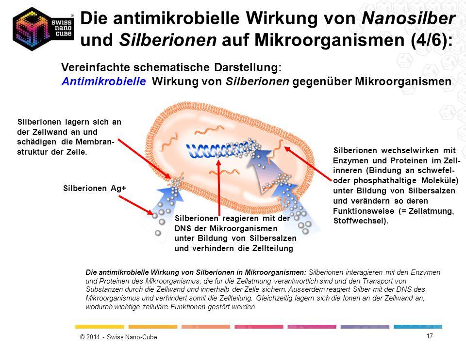 © 2014 - Swiss Nano-Cube 17 Die antimikrobielle Wirkung von Silberionen in Mikroorganismen: Silberionen interagieren mit den Enzymen und Proteinen des