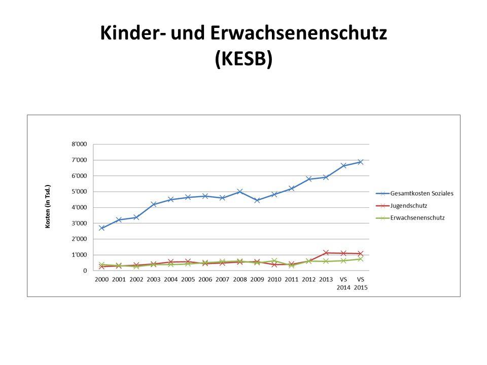 Kinder- und Erwachsenenschutz (KESB)