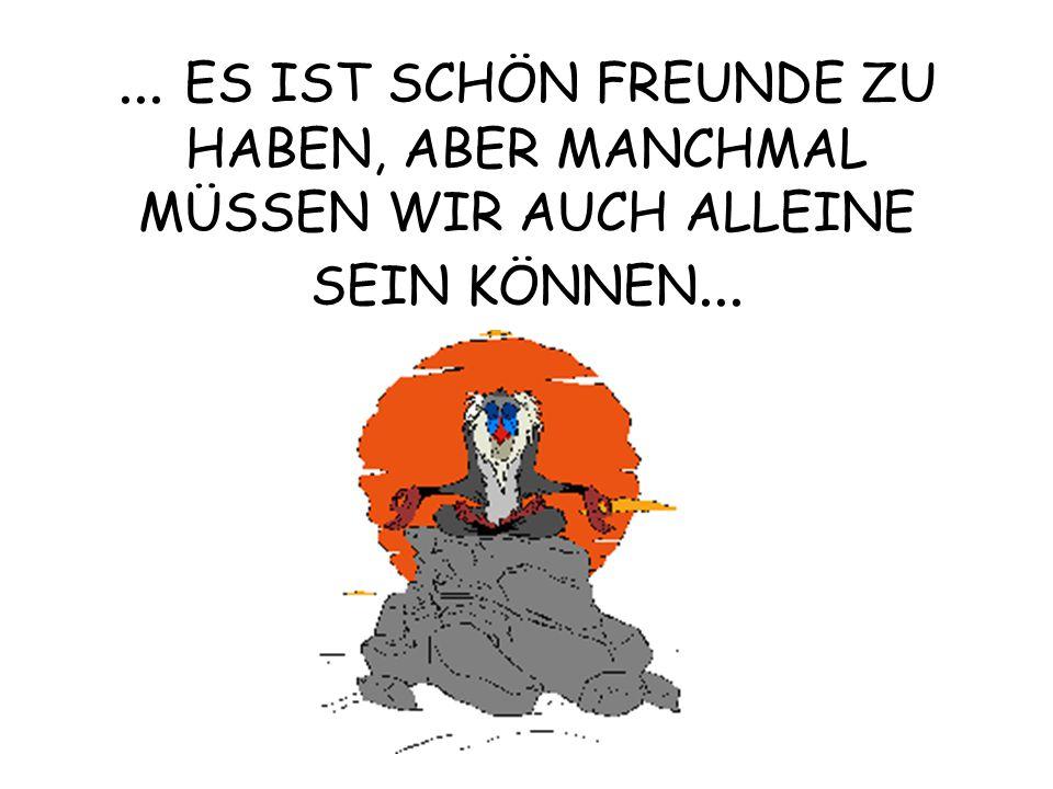 ... ES IST SCHÖN FREUNDE ZU HABEN, ABER MANCHMAL MÜSSEN WIR AUCH ALLEINE SEIN KÖNNEN...