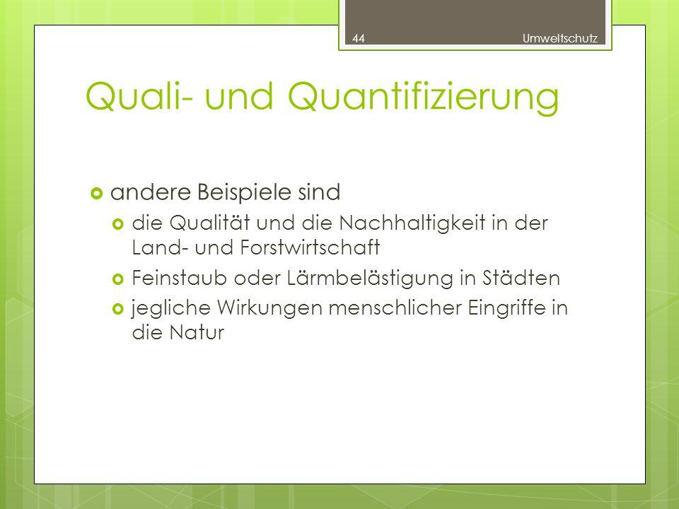 Quali- und Quantifizierung  andere Beispiele sind  die Qualität und die Nachhaltigkeit in der Land- und Forstwirtschaft  Feinstaub oder Lärmbelästigung in Städten  jegliche Wirkungen menschlicher Eingriffe in die Natur 44Umweltschutz