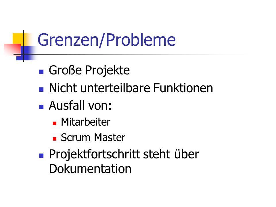 Grenzen/Probleme Große Projekte Nicht unterteilbare Funktionen Ausfall von: Mitarbeiter Scrum Master Projektfortschritt steht über Dokumentation