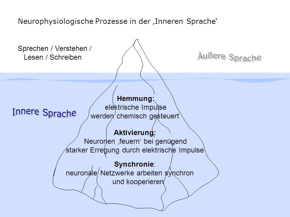 Wortspeicher / Bedeutungs-Programmierung Sprechen MundHand OhrAugen Planung Grammatik-Programmierung Laut-Programmierung SchreibenVerstehenLesen Der lange Weg durch spezialisierte neuronale Netzwerkverbände