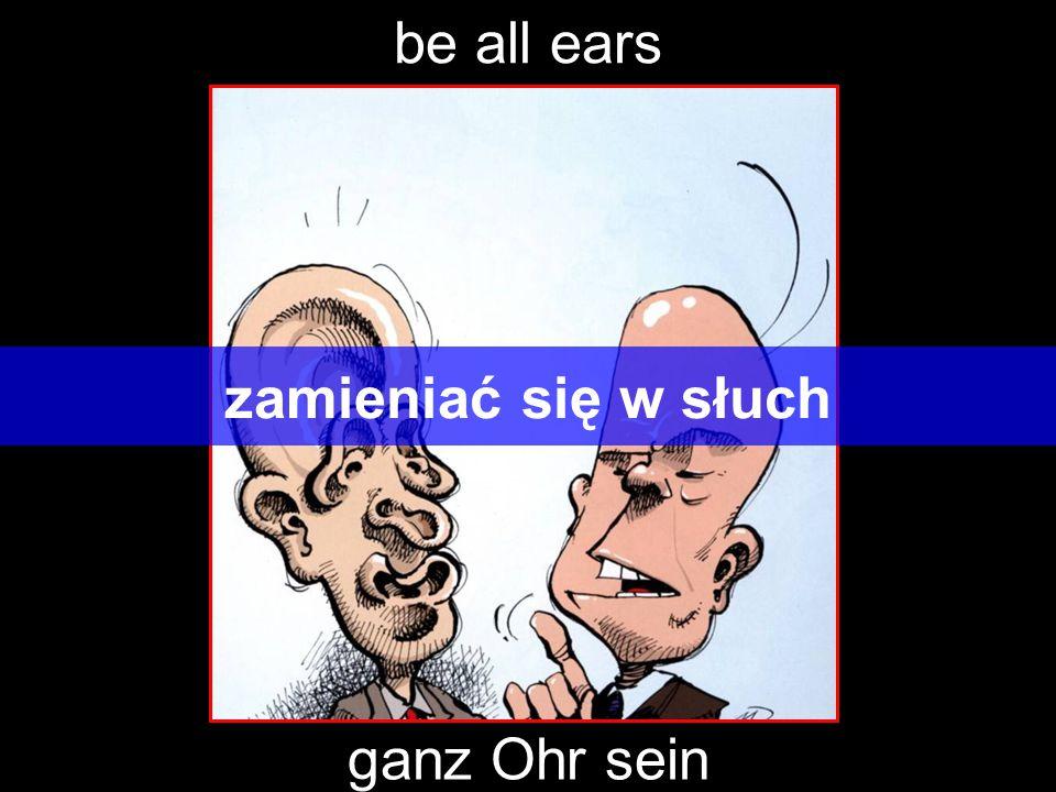 be all ears zamieniać się w słuch ganz Ohr sein