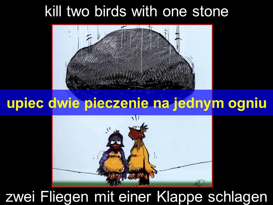 kill two birds with one stone upiec dwie pieczenie na jednym ogniu zwei Fliegen mit einer Klappe schlagen