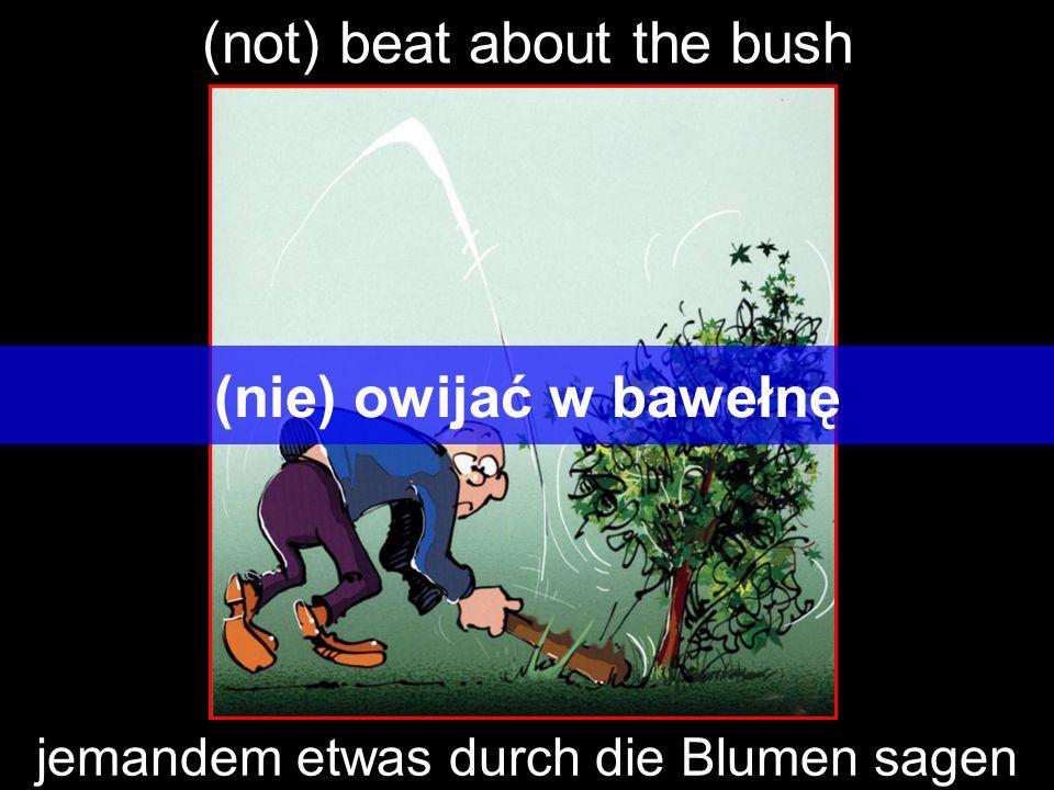 (not) beat about the bush (nie) owijać w bawełnę jemandem etwas durch die Blumen sagen