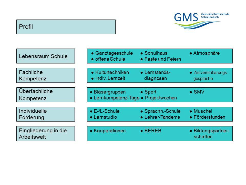 Profil Fachliche Kompetenz Überfachliche Kompetenz Individuelle Förderung Eingliederung in die Arbeitswelt Lebensraum Schule ● Ganztagesschule ● Schul