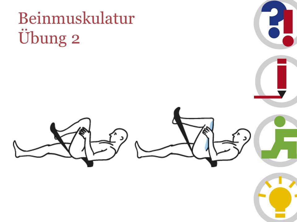 Beinmuskulatur Übung 2